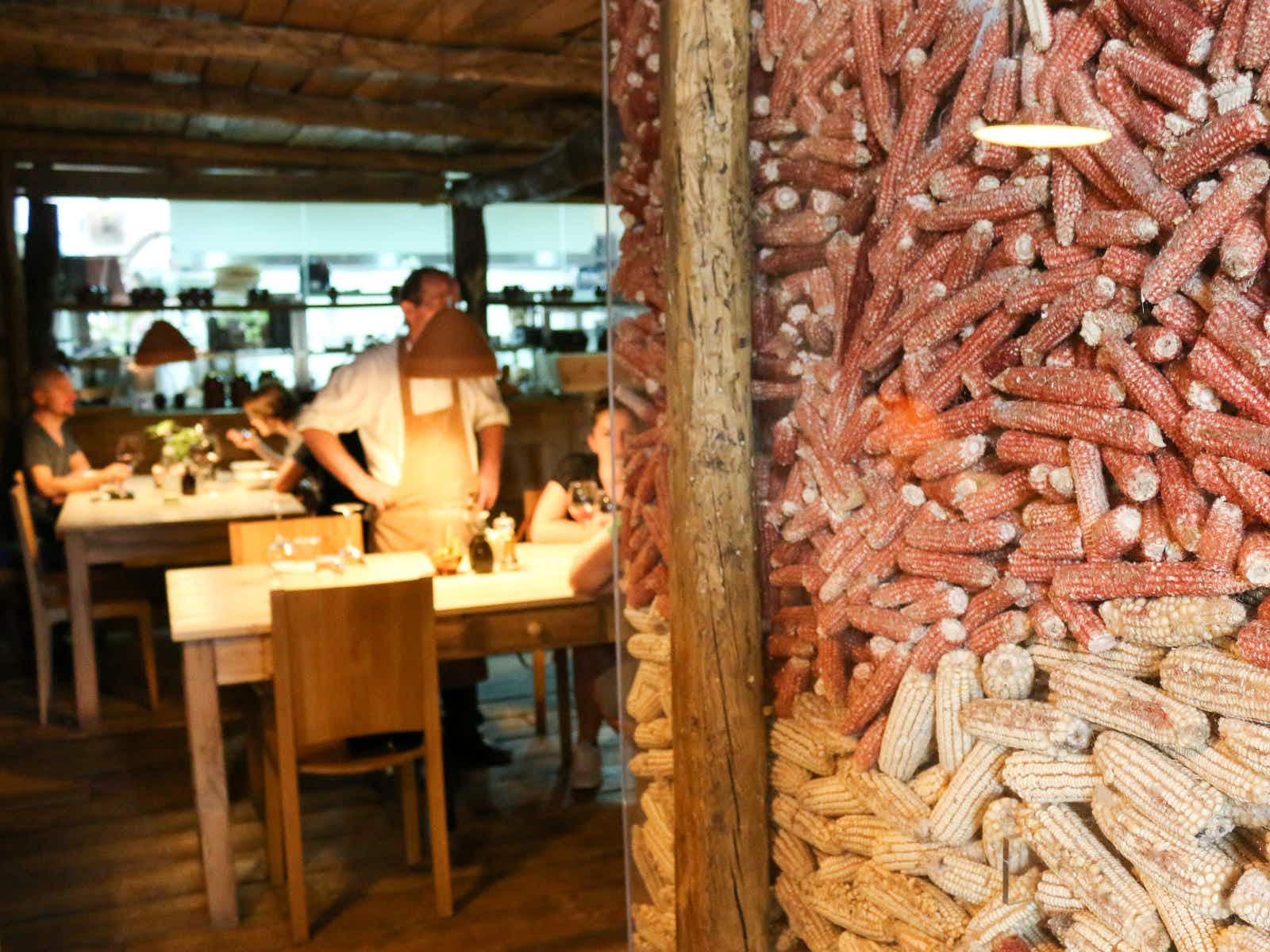 Lezhë to Lundër: northern Albania for foodies