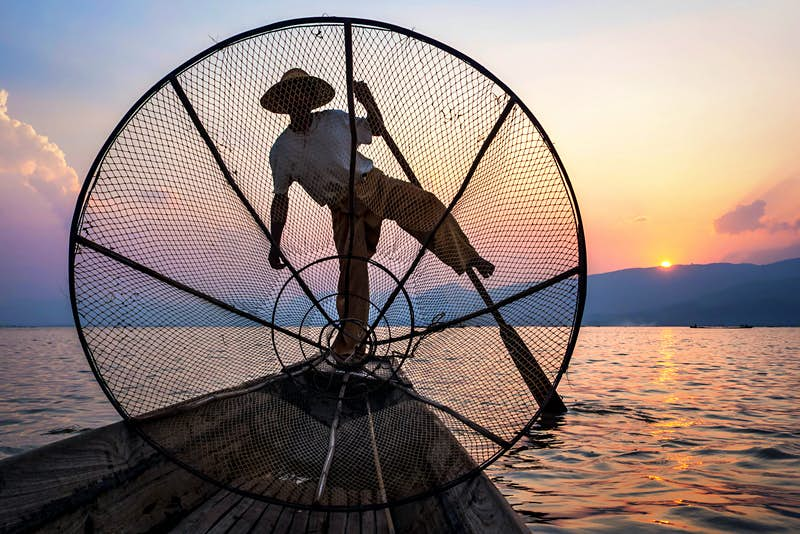 An Intha fisherman rowing at sunset