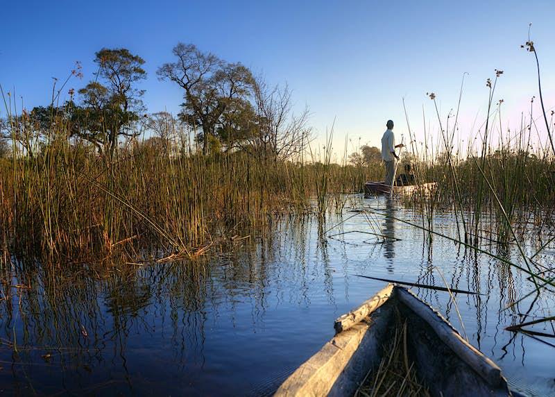 A boat trip in the Okavango Delta, Botswana © PlusONE / Shutterstock