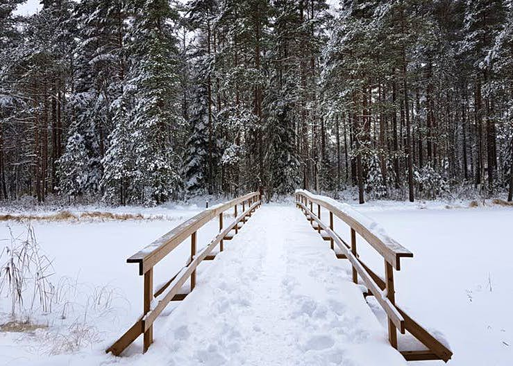 A snowy scene in Nuuksio National Park, one of Finland's many spine-tingling landscapes © Emma Sparks / Lonely Planet