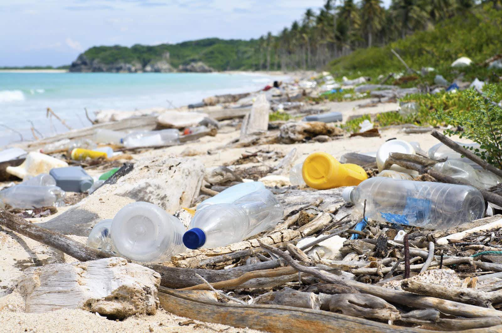 Are you ready to take the plastic-free travel pledge?