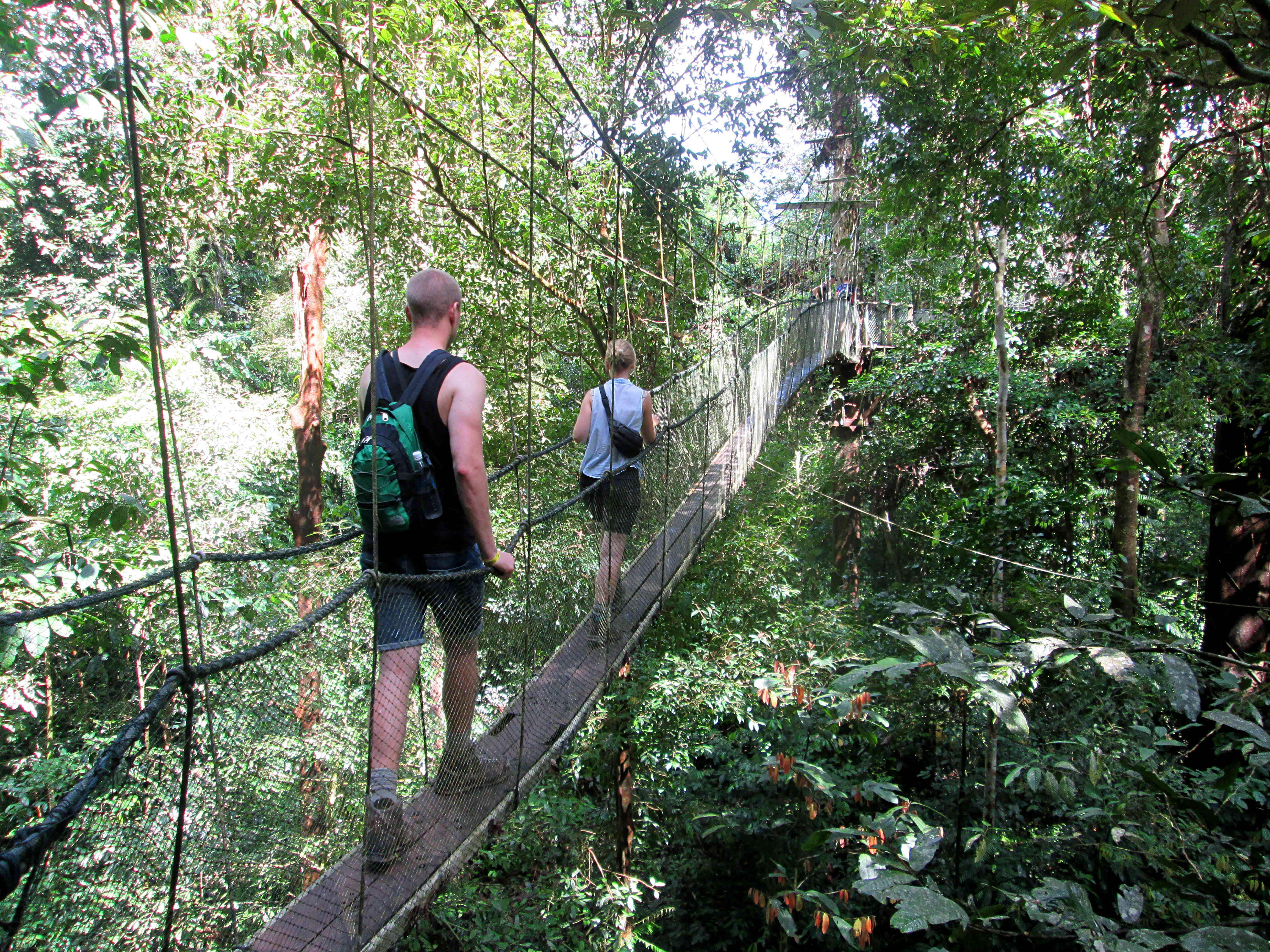 Into the heart of Borneo: a guide to Sarawak's national parks