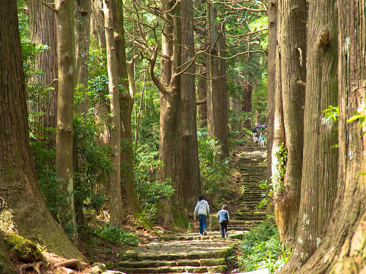 Hiking The Kumano Kodō Japan S Ancient Pilgrimage Route