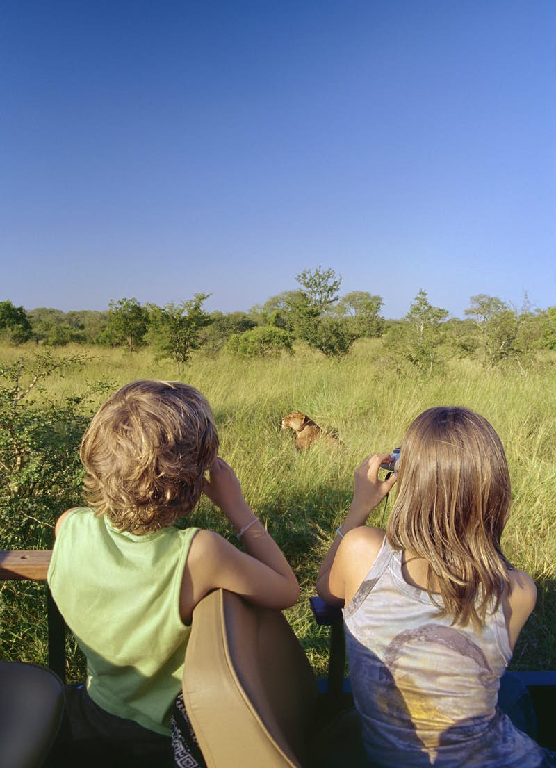 Romantic trip with kids in tow – two children watch a lion through binoculars in South Africa.