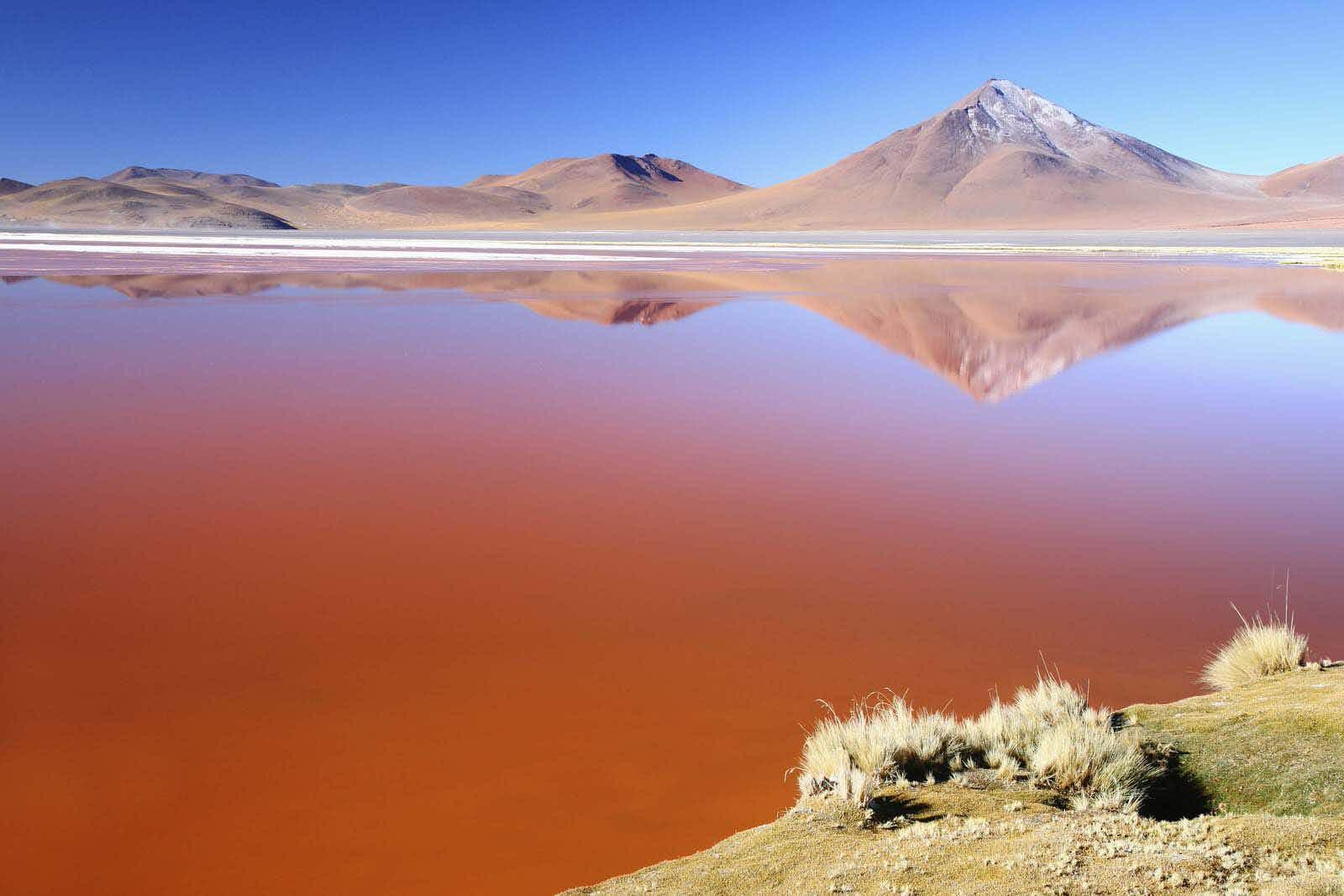 Laguna Colorada, Altaplano, Bolivia