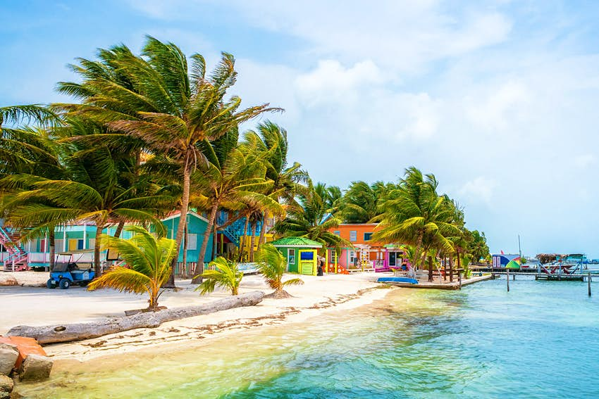 Palm trees and colourful houses line one of Caye Caulker's sandy beaches