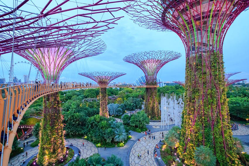 View from the walkway on The Supertree Grove at Gardens by the Bay, Singapore