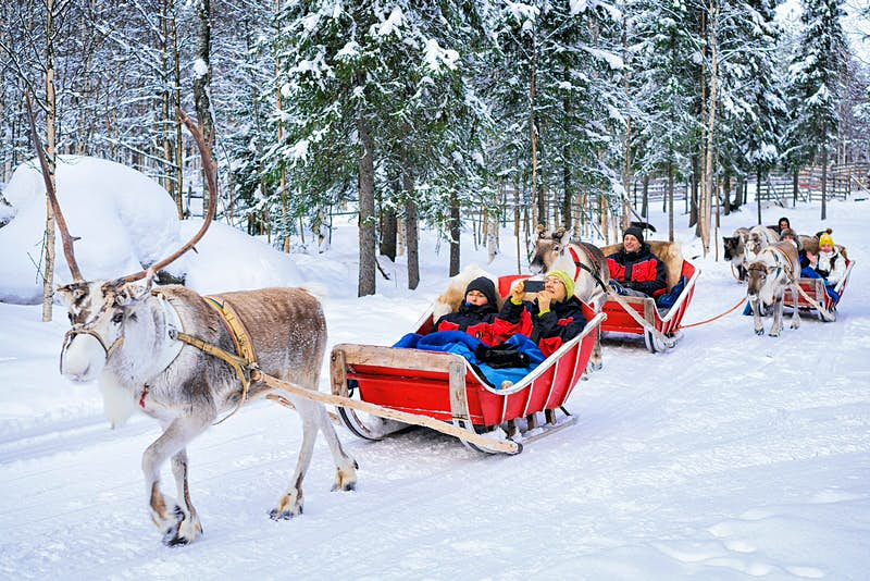 People enjoying sleigh rides in Rovaniemi, Finland; the sleighs are red and are being pulled by reindeer while in the background is a snowy forest scene.