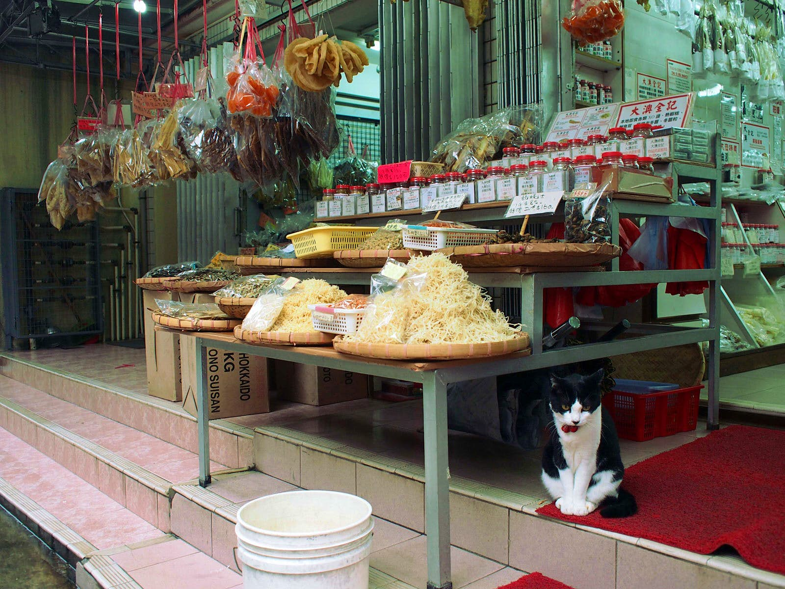 Dried fish hang and sit in piles at a shop storefront, a black and white cat sits on the steps