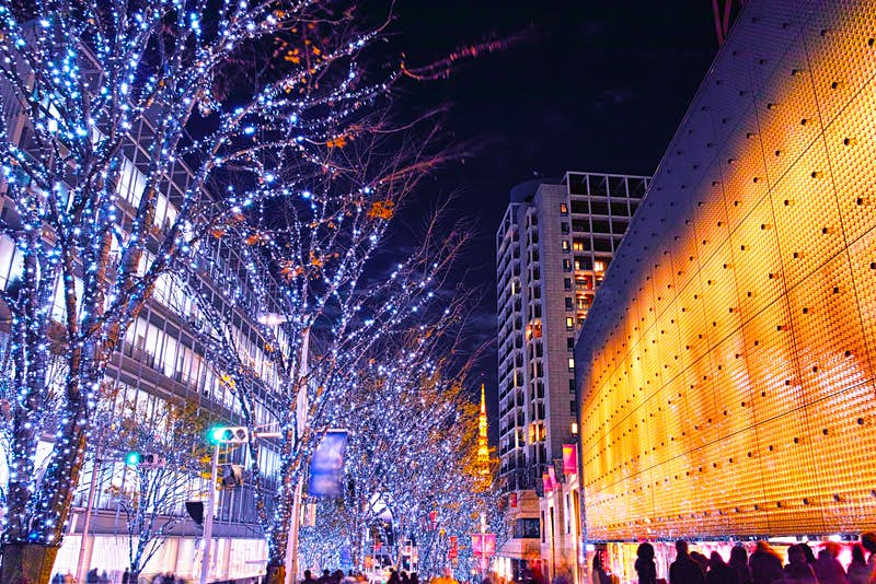 Blue and white lights cover a row of trees lighting up a street in Roppongi