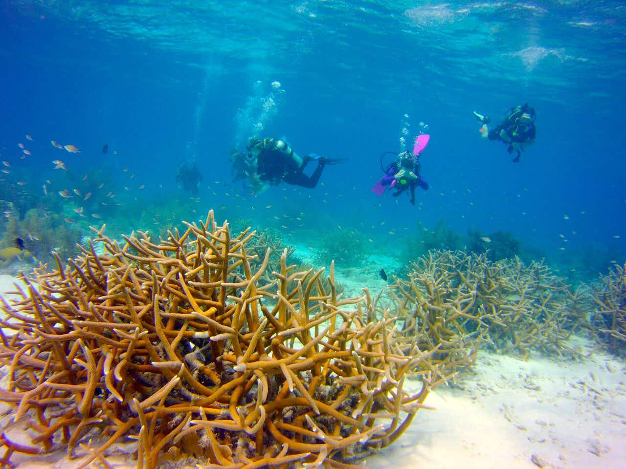 Bonaire waters offer loads of family fun