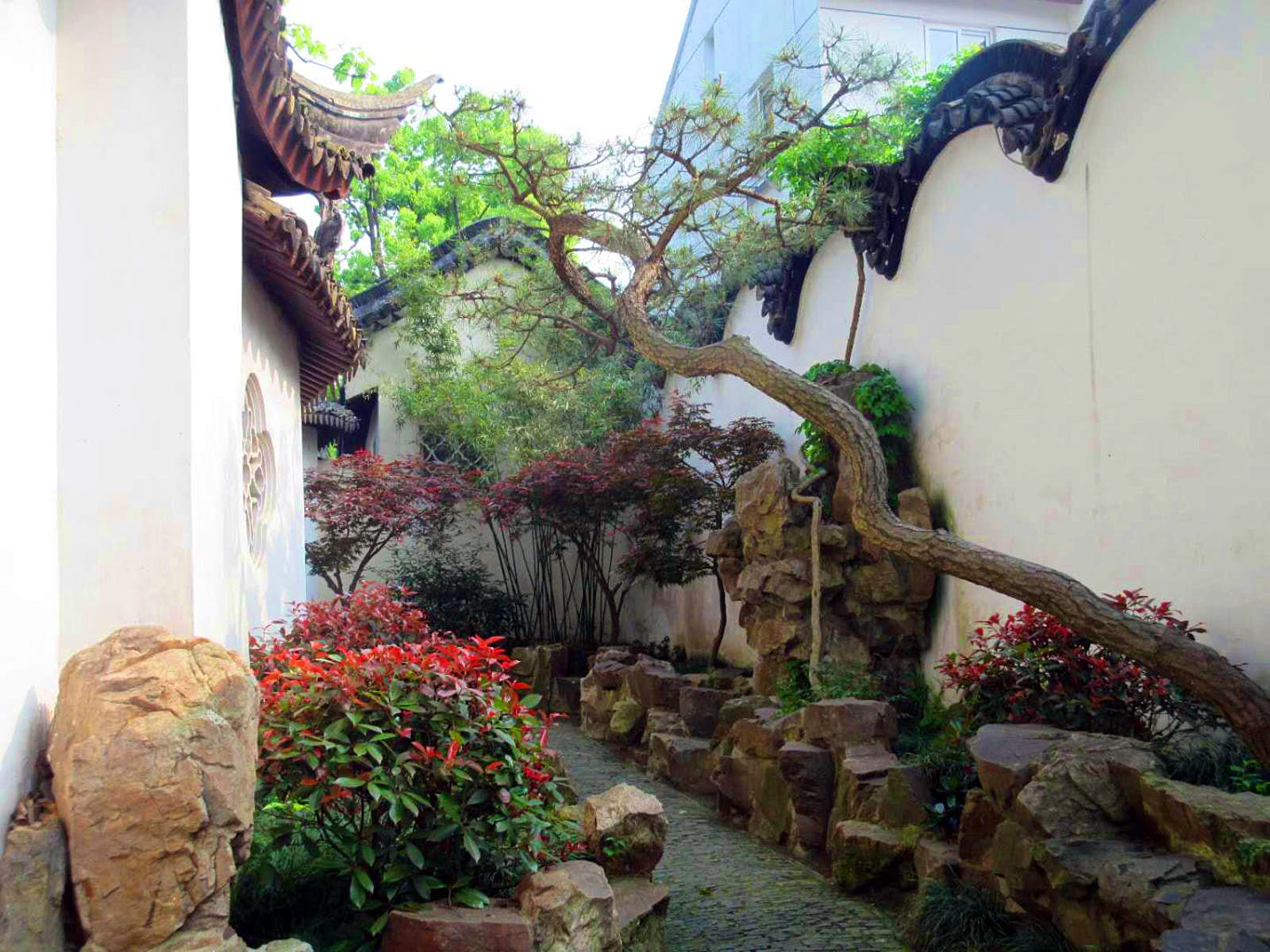Small shrubs with red flowers and a gnarled tree decorate a narrow passageway through the garden. Gardens were usually walled compounds that served as private residences for intellectuals and retired officials © Tess Humphrys / Lonely Planet