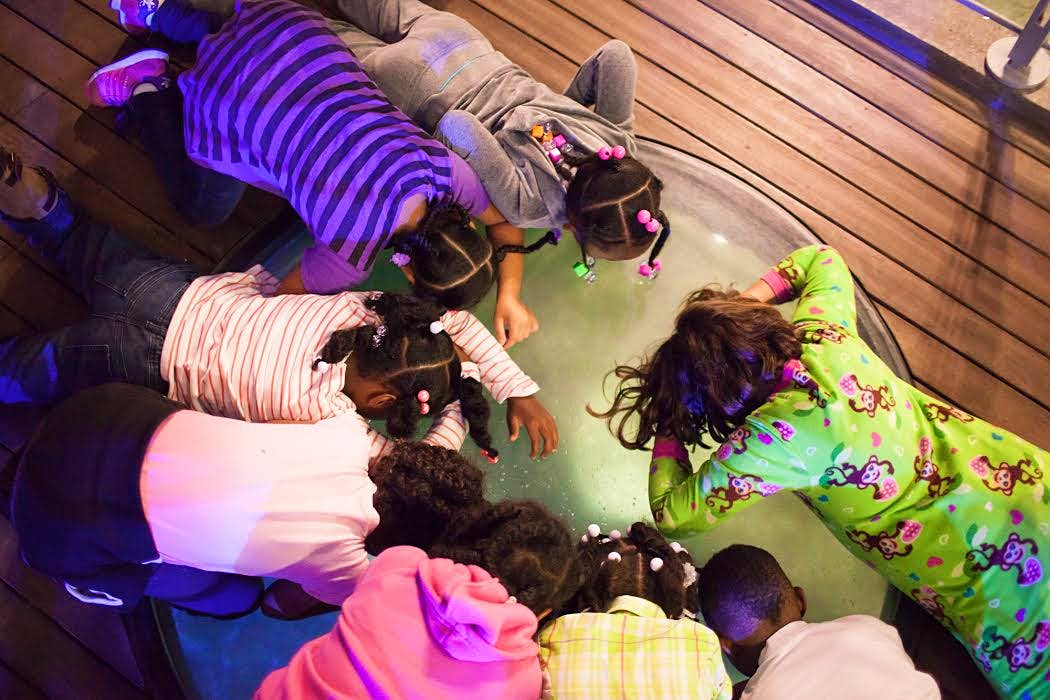 Children circle a open view tank into the reef lagoon © California Academy of Sciences