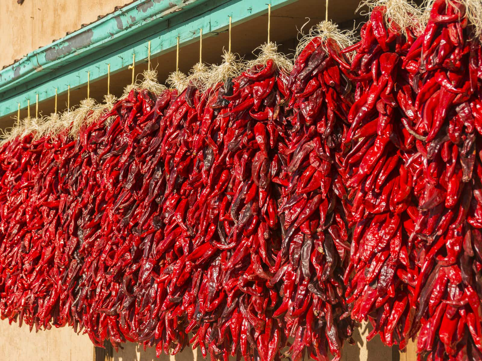 Hatch Chile Festival 2020.Red Or Green New Mexico S Most Mouth Watering Dishes
