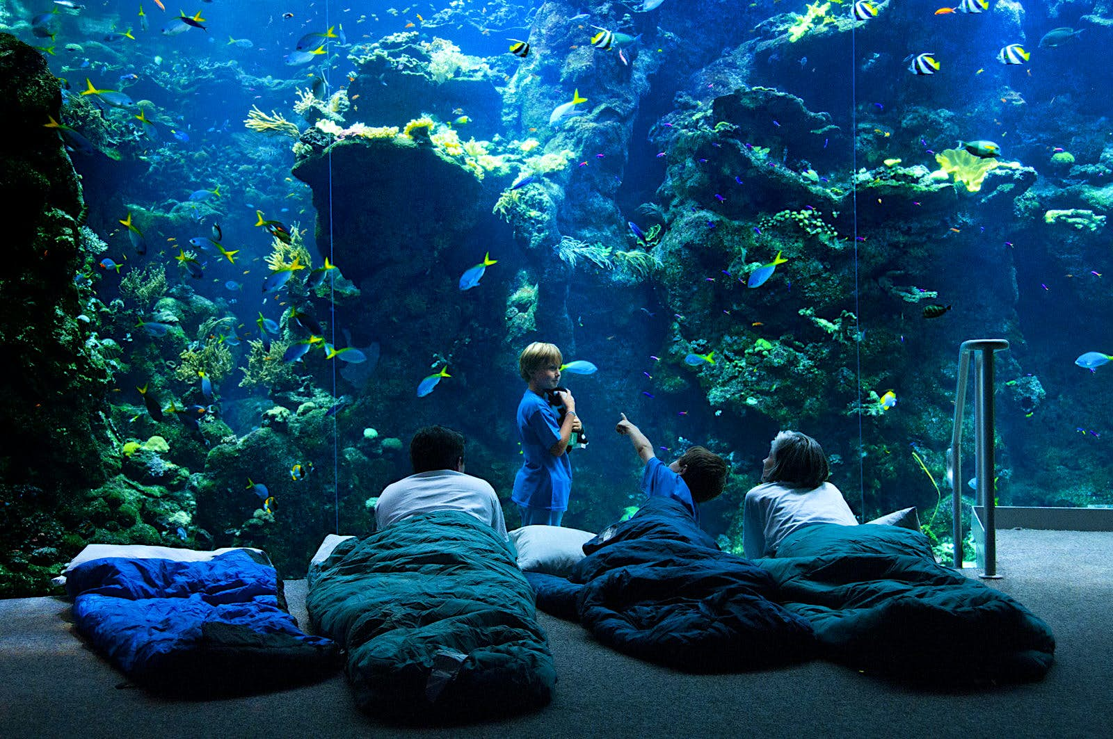 Three kids and one adult lie in sleeping bags in front of a giant aquarium filled with brightly colored fish and coral © California Academy of Sciences
