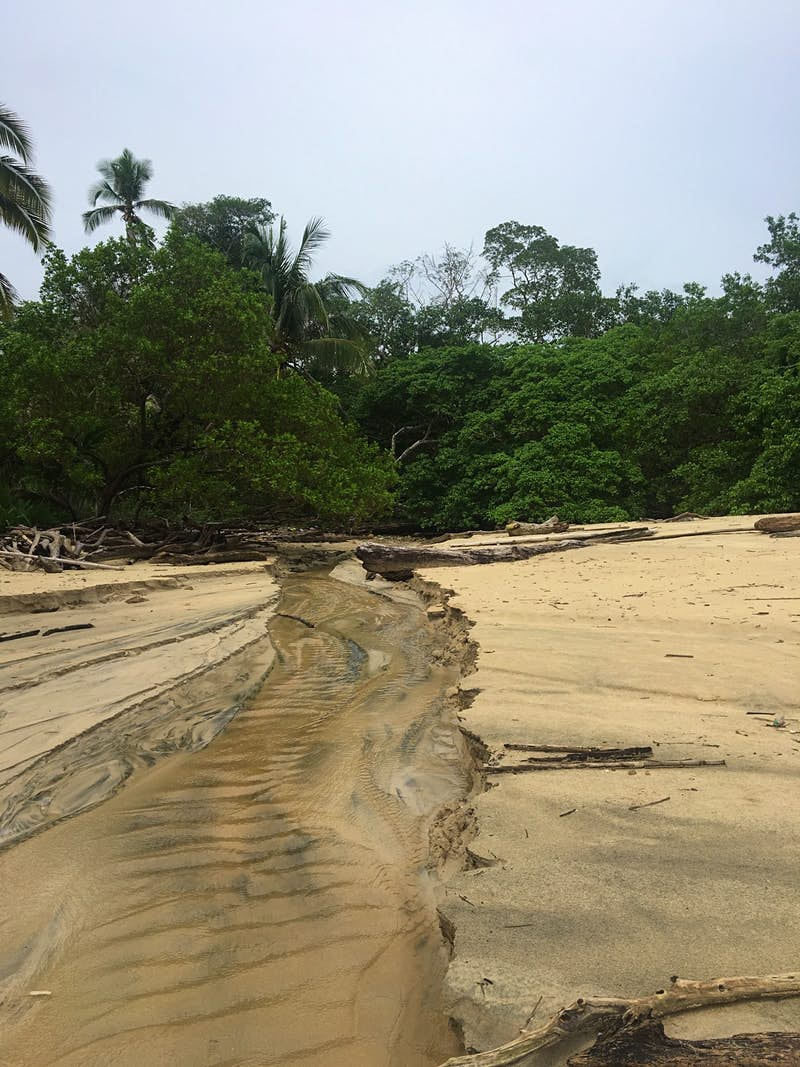 Canas Island is one of a group of islands that make up the Pearl Islands in Panama Alicia Johnson / Lonely Planet