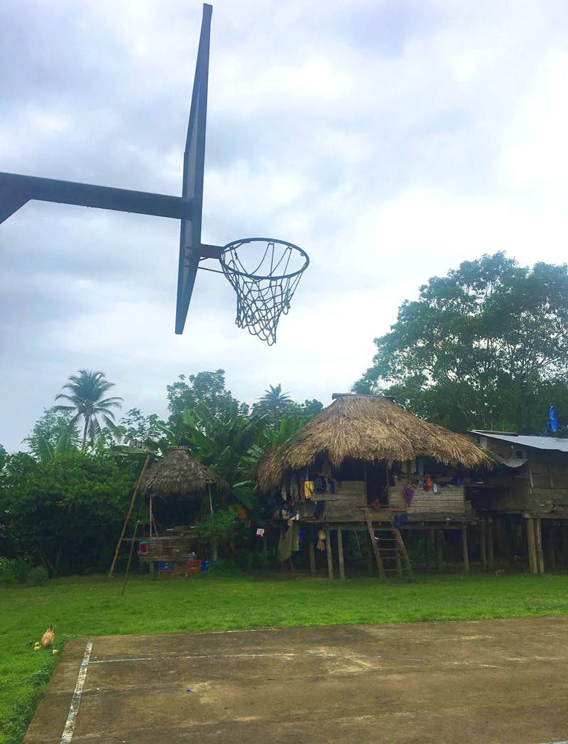 Traditional Embera home made of wood with a thatched roof Alicia Johnson / Lonely Planet