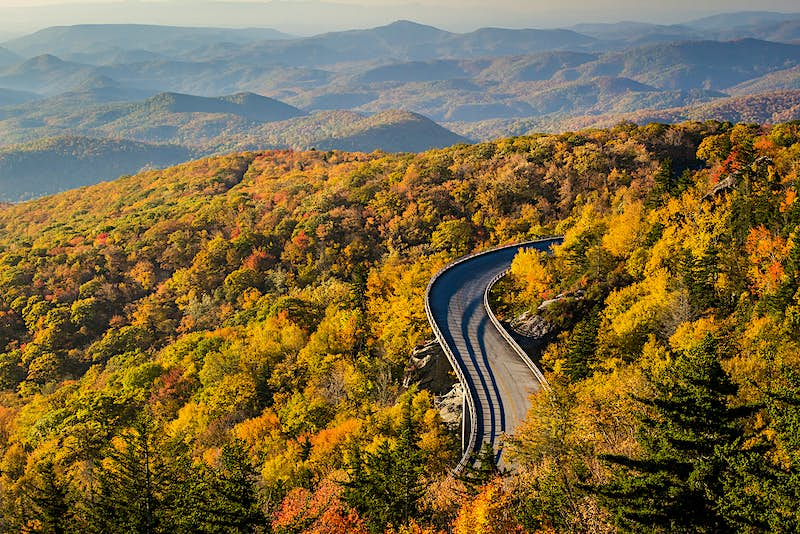 An elevated tarmac road snakes through dense woodland of yellows, oranges and greens, with hills in the background