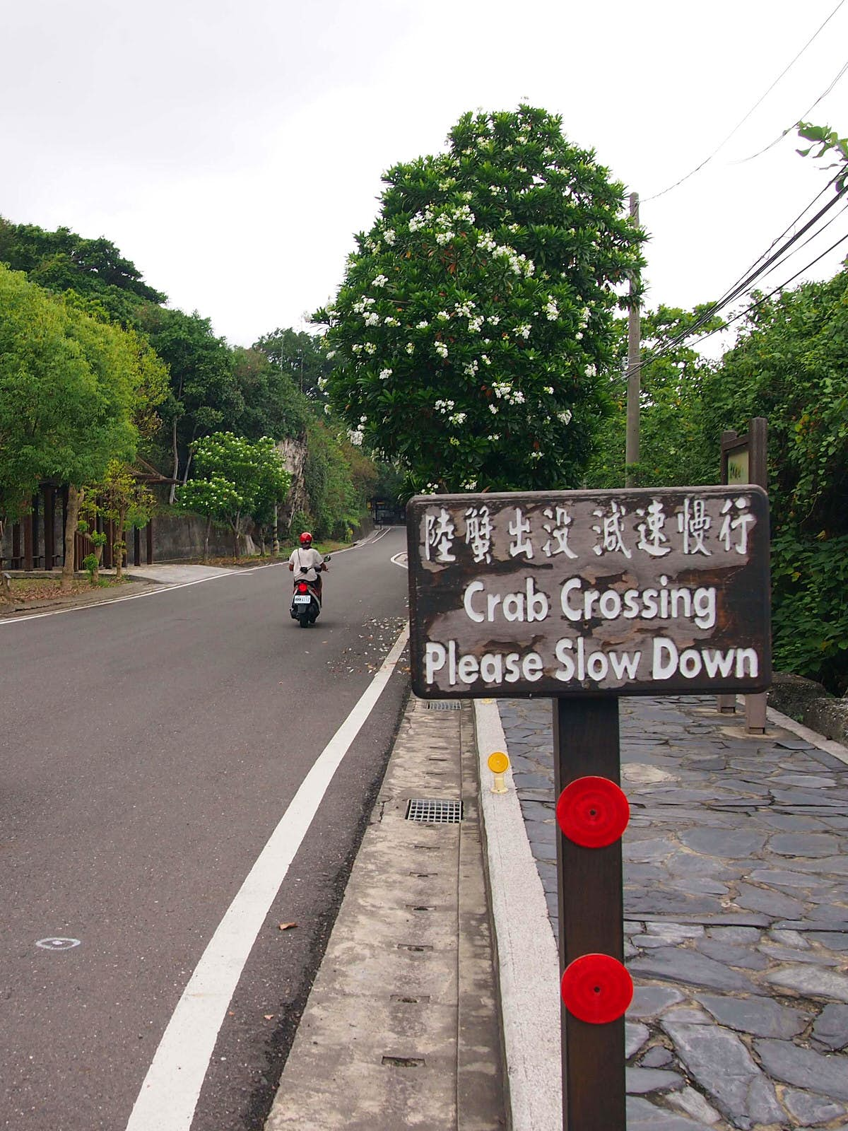 A scooter drives past a wooden sign that reads 'Crab Crossing Please Slow Down'. Drivers should take care not to disturb crabs crossing the road © Tess Humphrys / Lonely Planet