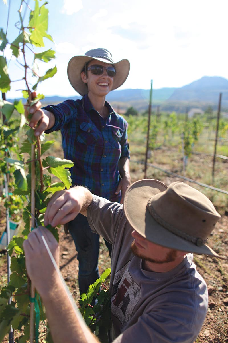 Nikki Bagley, Director of Viticulture, Southwest Wine Center, a dedicated winery and wine lab in Arizona