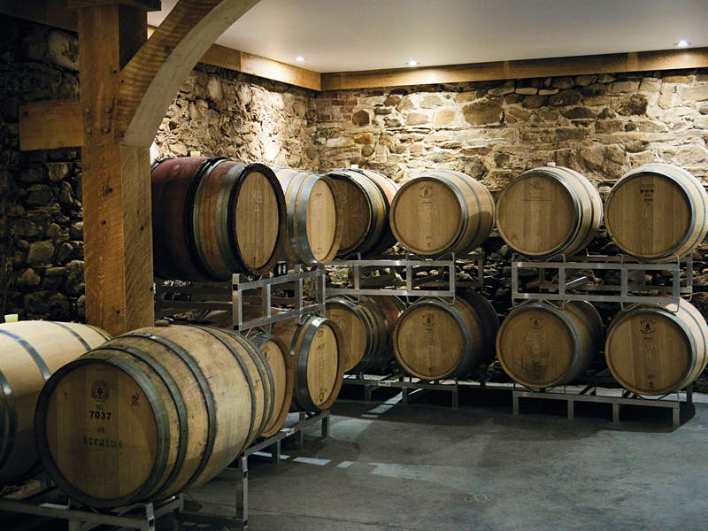 The barrel room at Planter's Ridge winery in Grand Valley