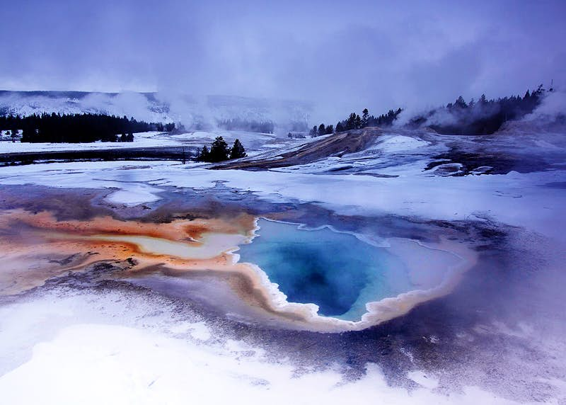 A wintry scene near Old Faithful in Yellowstone National Park