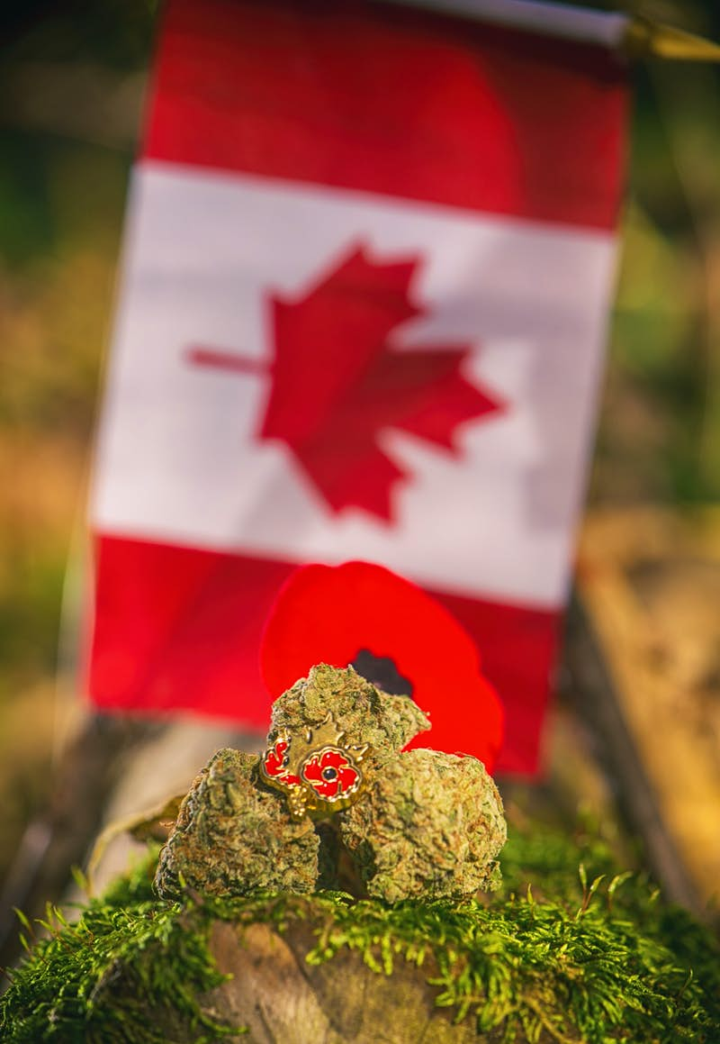 Cannabis buds are arranged in front of a Canadian flag – cannabis is now legal in Canada
