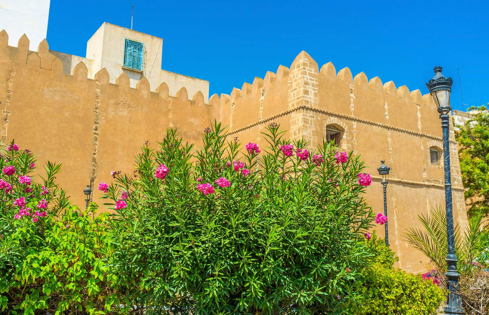 Sfax, Tunisia - September 3, 2015: The medieval fortification of Sfax surrounded by lush gardens with many colorful flowers, Tunisia.