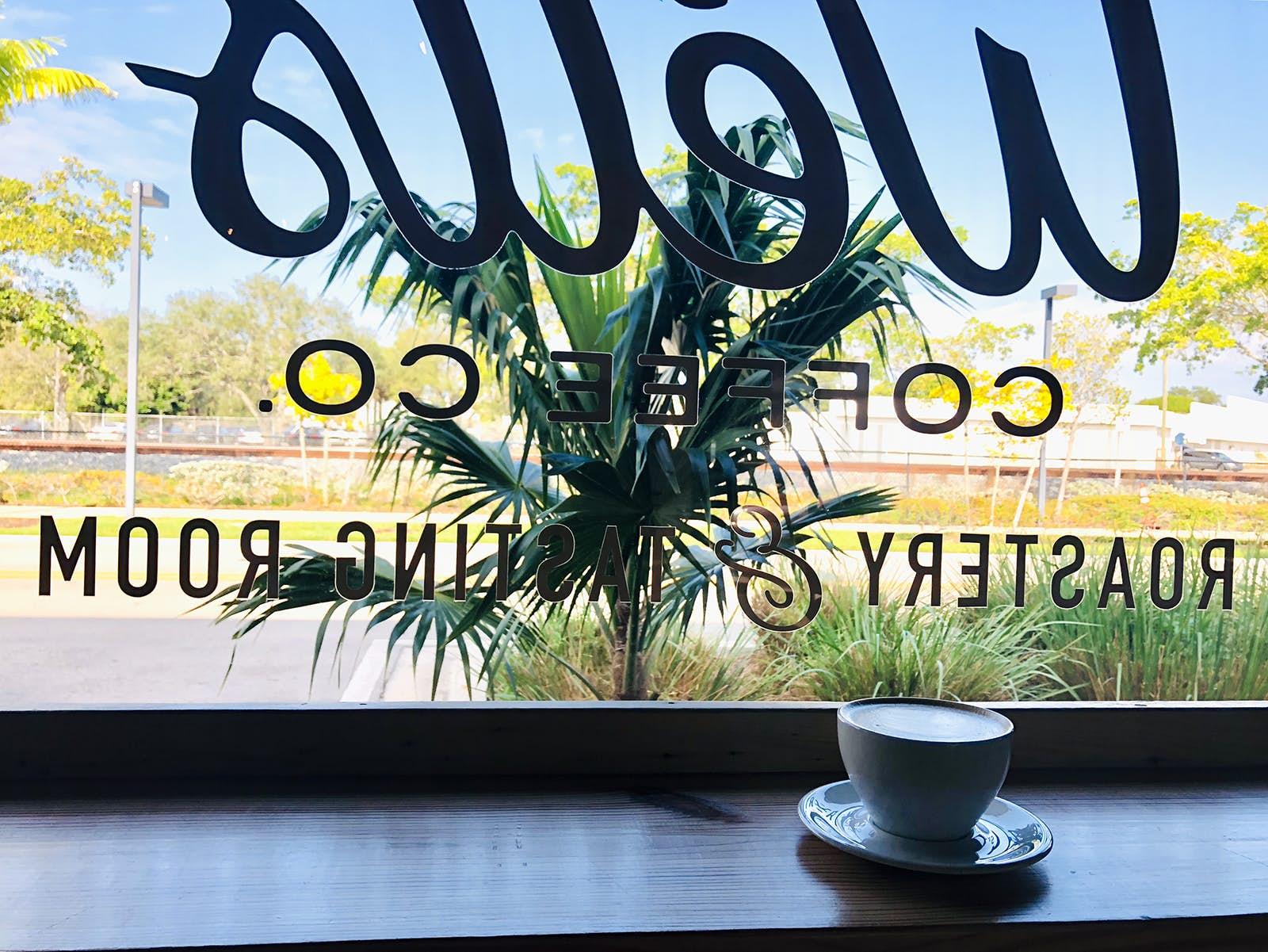green coffee massive dynamic ltd