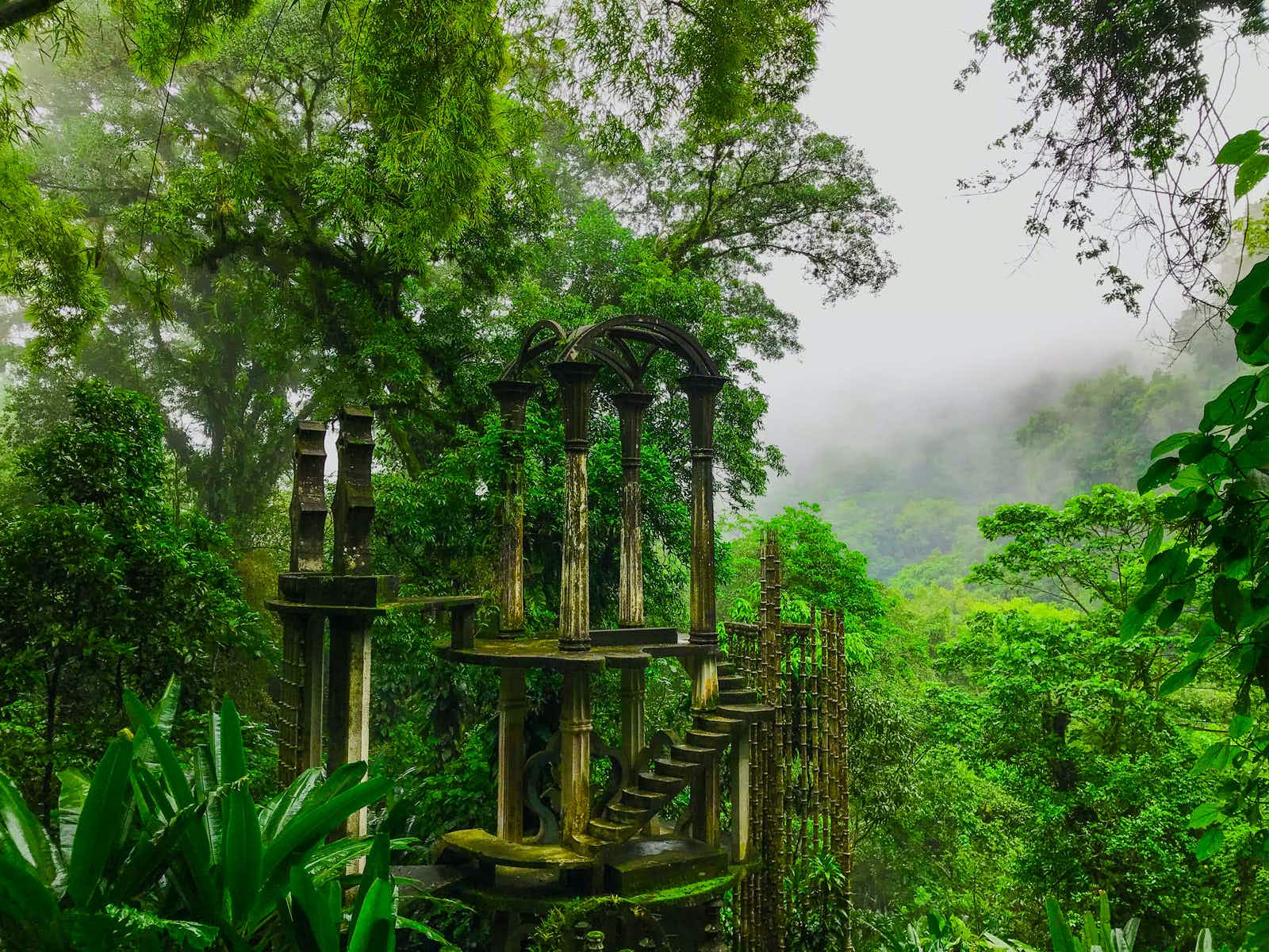 A stone staircase ends at the tops of trees on a verdant hillside