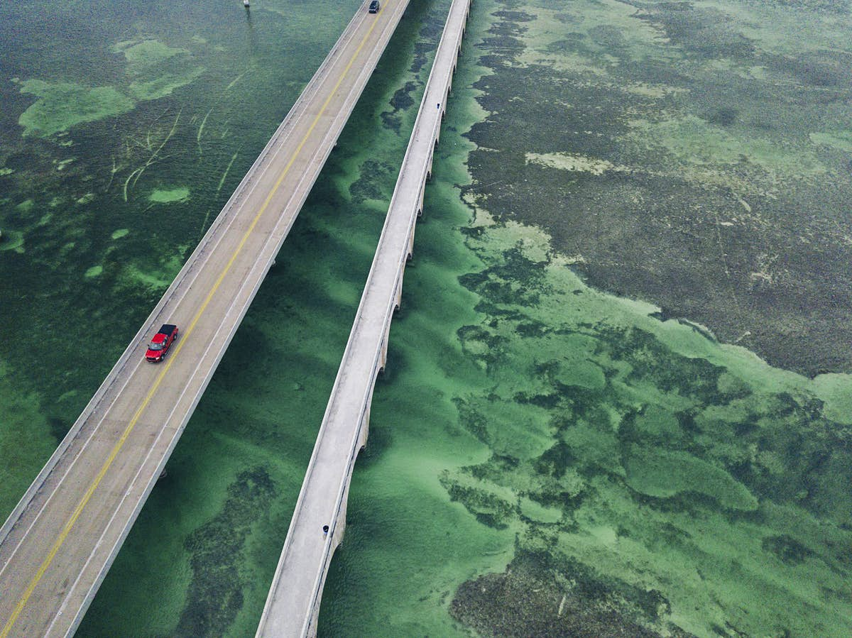 First-time Florida Keys: island hopping along the Overseas Highway