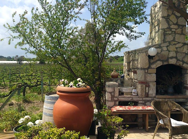 An outdoor scene at Urlice Vineyards