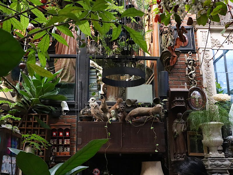 Interior of Puritan cafe in Ari district, a greenhouse-style shack filled with antiquities