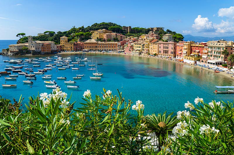 A view over Sestri Levante's Baia del Silenzio, with flowering bushes in the foreground and about 30 small white boats on the turquoise water. The bay is almost a perfect semi-circle, behind the thin strip of white sand there are buildings painted in warm colours and vibrantly green trees.