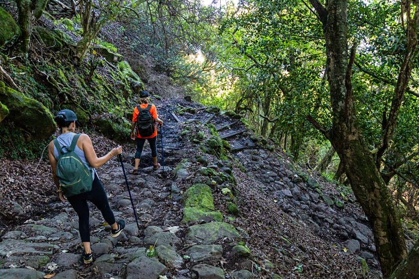 A steep, stony switchback curves down a tropical jungle cliff as two hikers descend to the Kalaupapa peninsula.