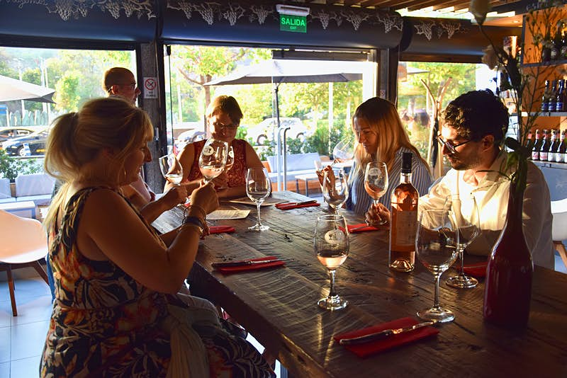A group of people sit at a table drinking rose wine in Santiago, Chile