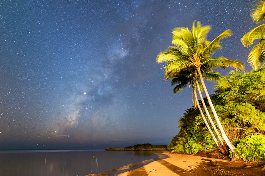 In a time-lapse shot, a beach with palm trees is seen at twilight, while a distinctive pattern of stars in the sky reveals the Milky Way galaxy.