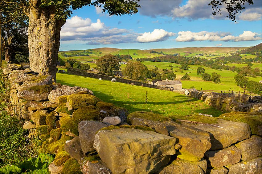 A view over a stone wall of the countryside of the Yorkshire Dales