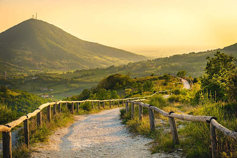 A path winds through the green Euganean Hills at sunset