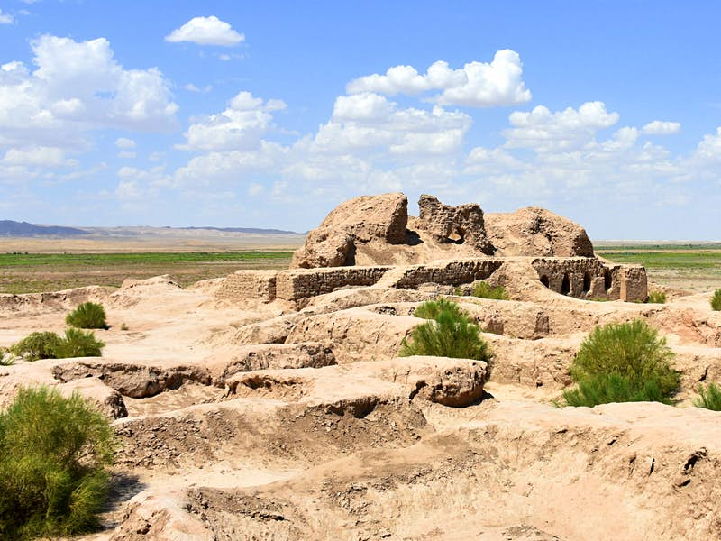 Mud remains of an ancient settlement dotted with green weeds and an open desert beyond