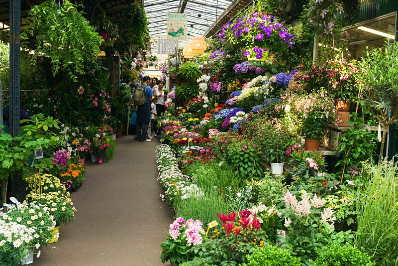 The stalls in this covered market are lined with flowers and greenery