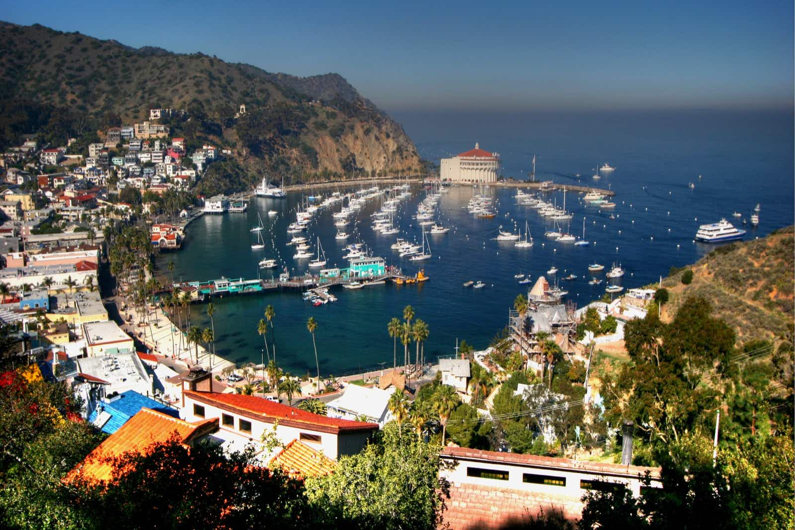 The harbor at Avalon Village is a charming jumping-off-point for a Catalina adventure © Tan Yilmaz / Getty Images