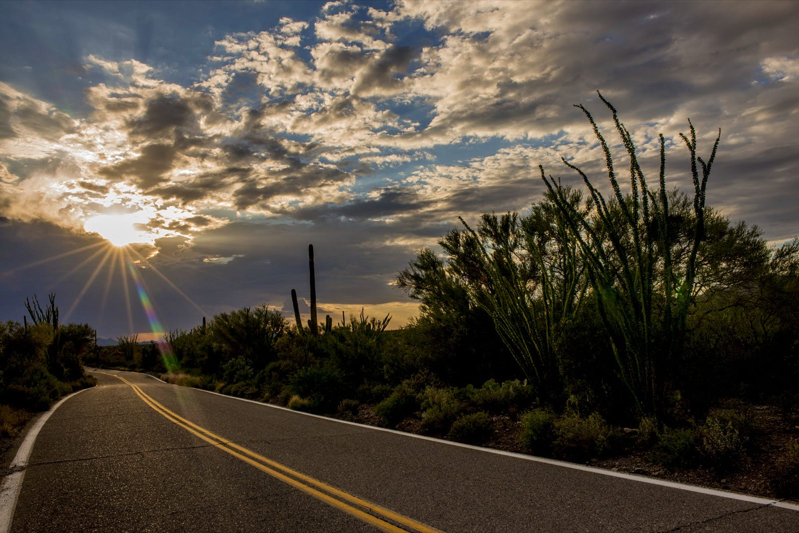 A road leads through a cactus field while the sun lights up interesting clouds. The Tempest is the perfect audiobooks for US road trip out west selection.