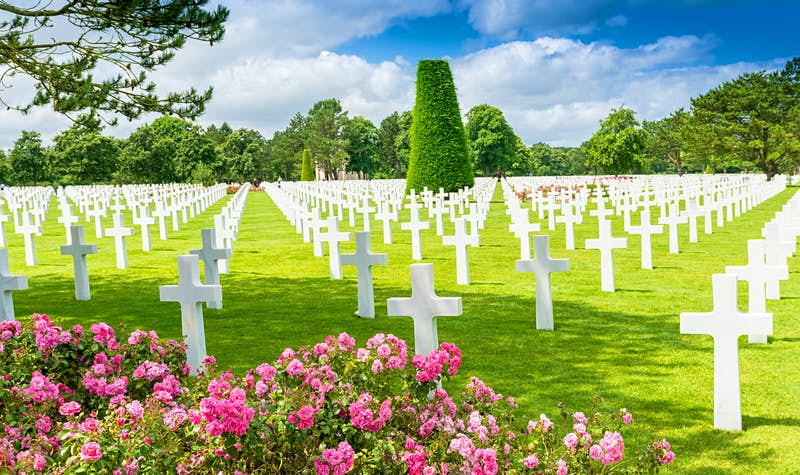 Trees and pink flowers next to a field of white crosses at the American cemetery in Colleville-sur-Mer