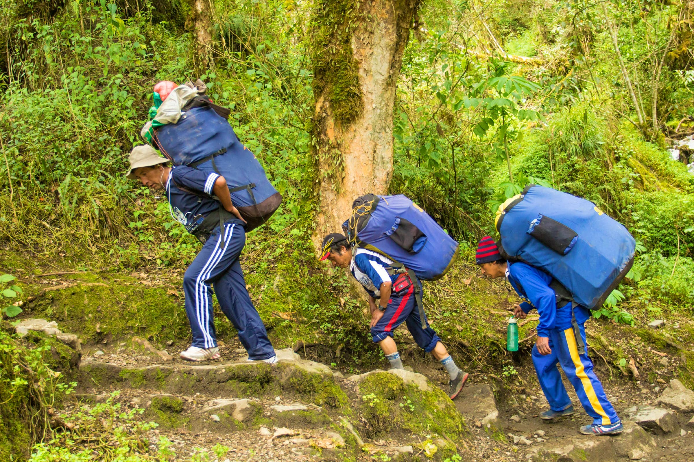 Peruvian porters with loaded packs carrying camping gear for hikers on the Inca Trail.