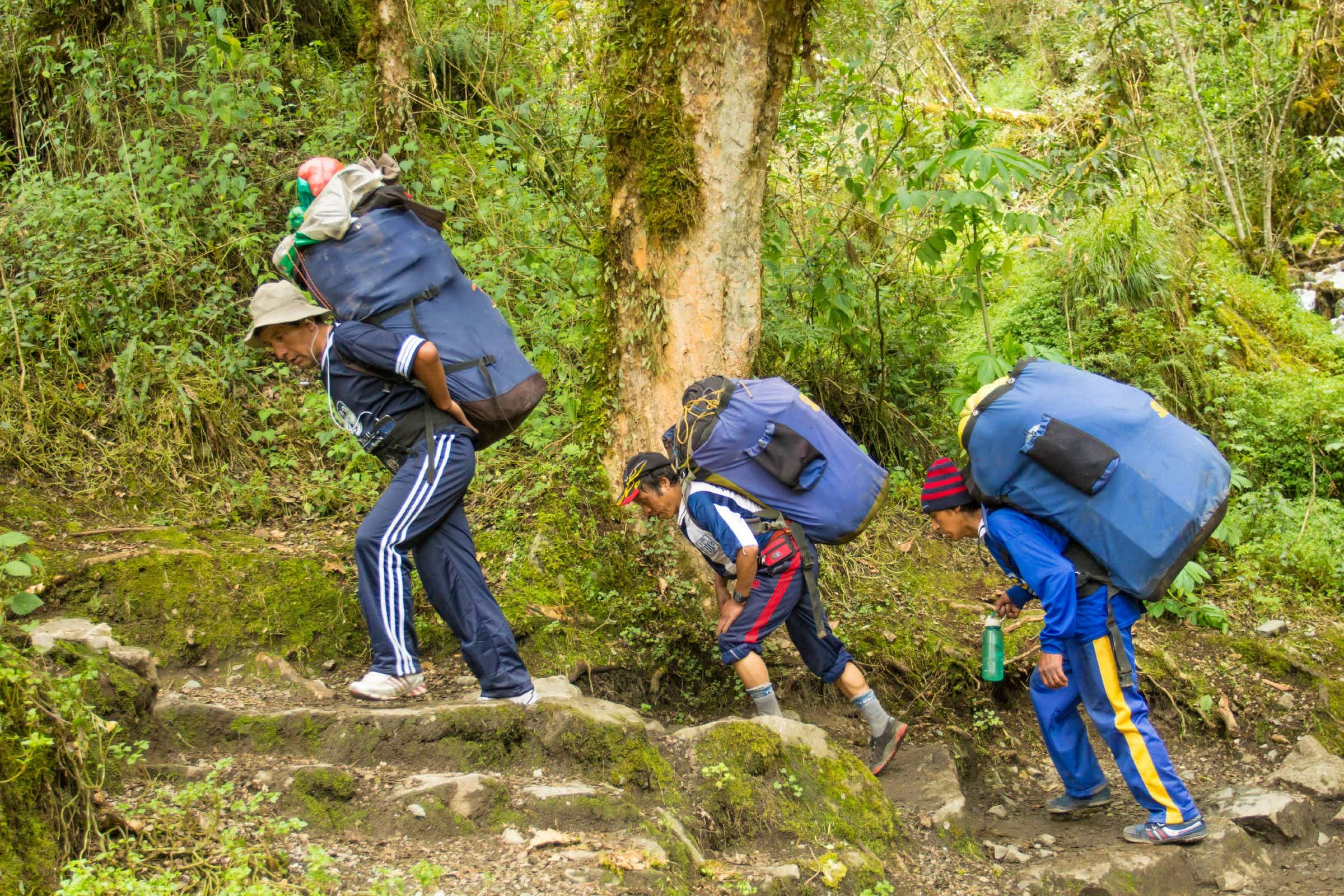 11 March, 2016: Peruvian porters with loaded packs carrying camping gear for hikers on the Inca Trail.