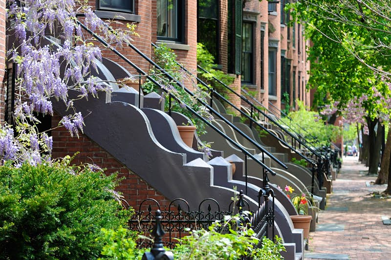 A row of classic Victorian-themed apartments with red brick walls and sidewalks, elegant stone steps and iron railings. There is a light purple plant next to stairs and a row of trees lining the sidewalks; Perfect weekend Boston.