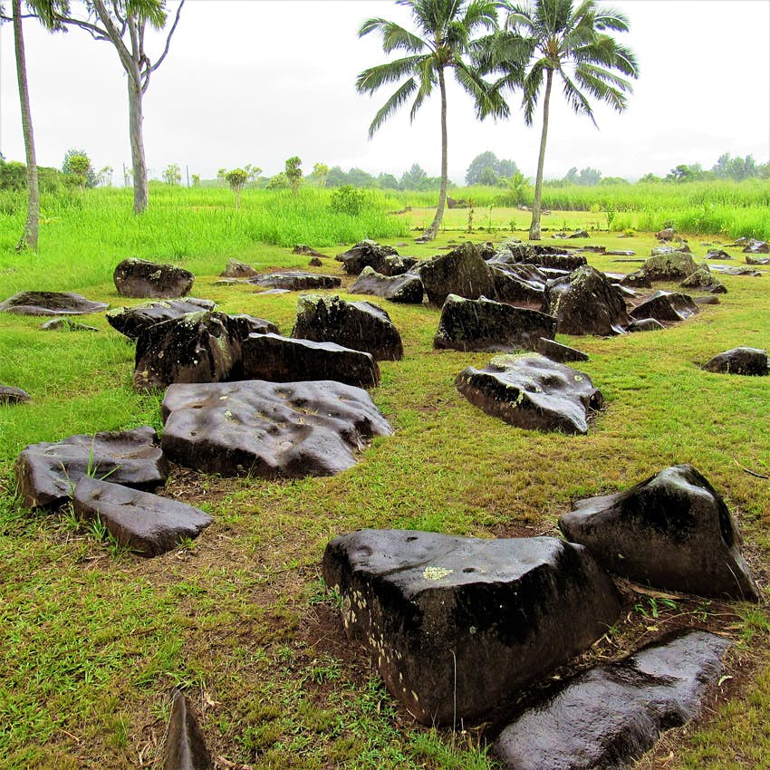 A series of smooth rocks glisten in the rain on a large grassy pasture; free things to do in Hawaii