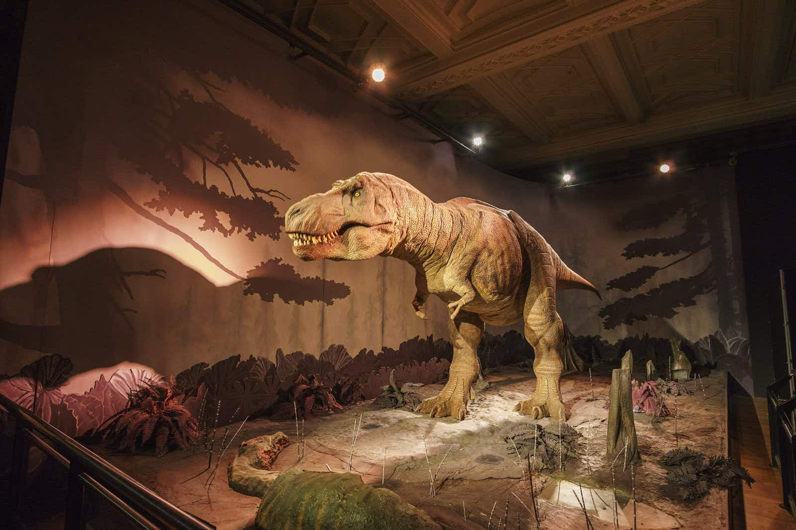 A large T-Rex stands in an empty gallery with light effects creating a sense of being in a prehistoric world
