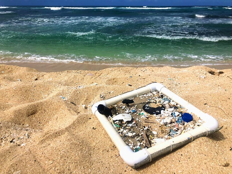 A square sifter sits on the sand by the ocean with lots of small pieces of plastic stuck in its net; Sustainable Hawaii